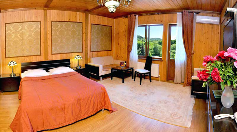 Размещение на отдых в 2 местном, 1 комнатном, Студии в санатории Вилла Арнест. Кисловодск